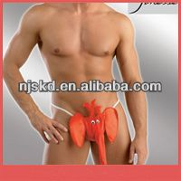 funny men briefs red satin elephant and women sex underwear Best Buy follow this link http://shopingayo.space