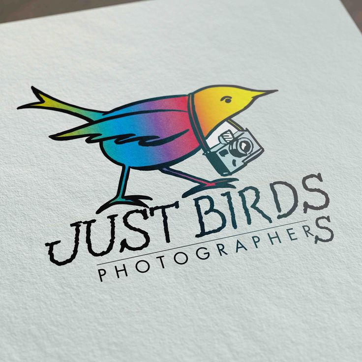 Logo - JUST BIRDS