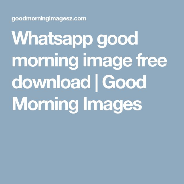 Whatsapp good morning image free download | Good Morning Images