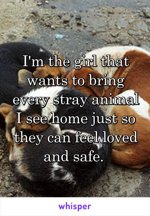 I'm the girl that wants to bring every stray animal I see home just so they can feel loved and safe.