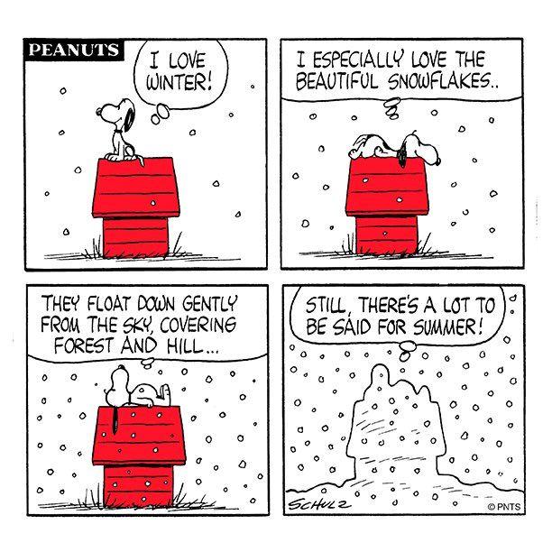 Winter vs. Summer ❄️