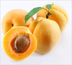 Apricot - Nutrition | Selection | Storage Apricot  Scientific Binomial Name: Prunus armeniaca  Selection Information  Usage: Eating fresh, baking, glazes, canning, dried, preserves and jams, desserts.  Selection & Storage: An Apricot should be well-formed and fairly firm. Pick apricots that are dark yellow or yellow-orange in color. Apricots are very fragile and should not be handled roughly or stored at high room temperatures.