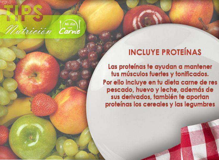 Incluye Proteínas