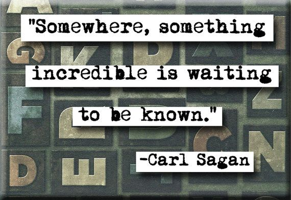 Carl Sagan Incredible Quote Magnet or Pocket by chicalookate, $4.00