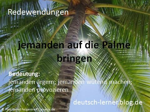 Deutsche Redewendungen: jemanden auf die Palme bringen