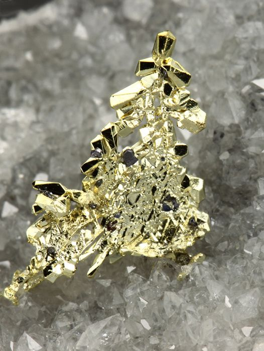 NATIVE GOLD Minerals from Rosia Montana, Romania