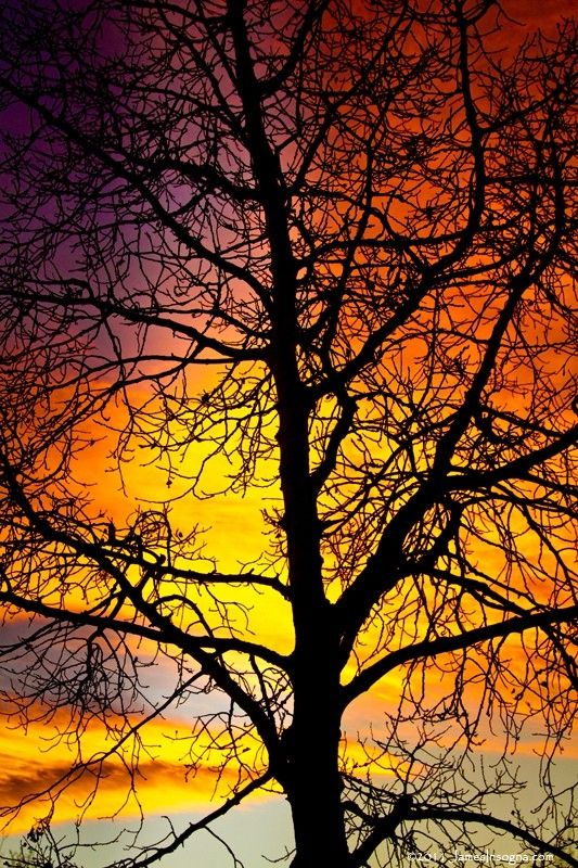 126 Best Force Of Nature Images On Pinterest