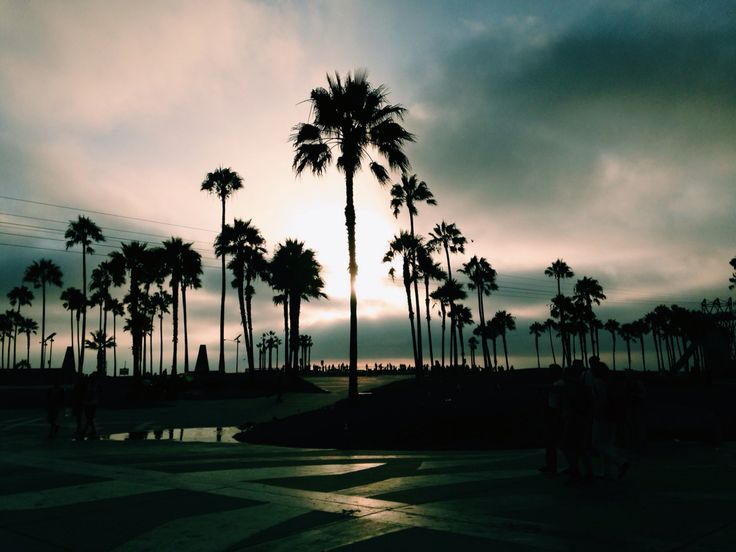 Venice Beach, Los Angeles, CA. 2013