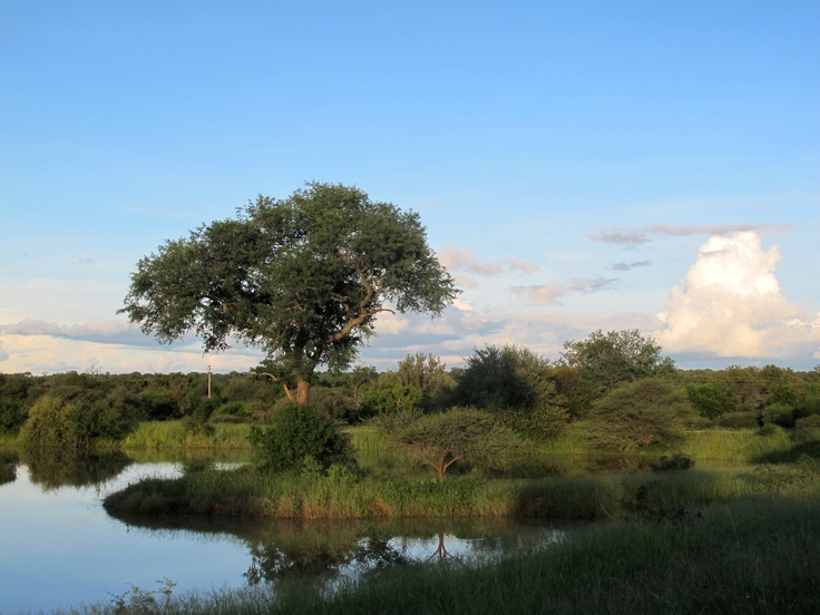 At Kapama Karula Game Reserve