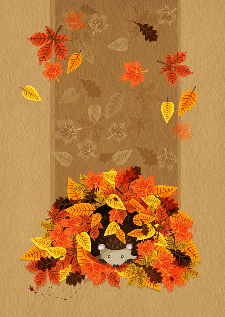 Autumn Leaves with a little Hedgehog hiding within the leaves ready for hibernation. :)
