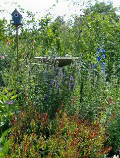 Aranyalma: Madárfürdő házilag fillérekből Concrete bird baths DIY