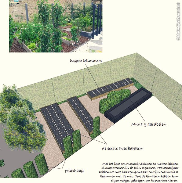 43 best images about intratuin moestuinieren on pinterest gardens tea tins and urban gardening - Luifel ontwerp voor patio ...