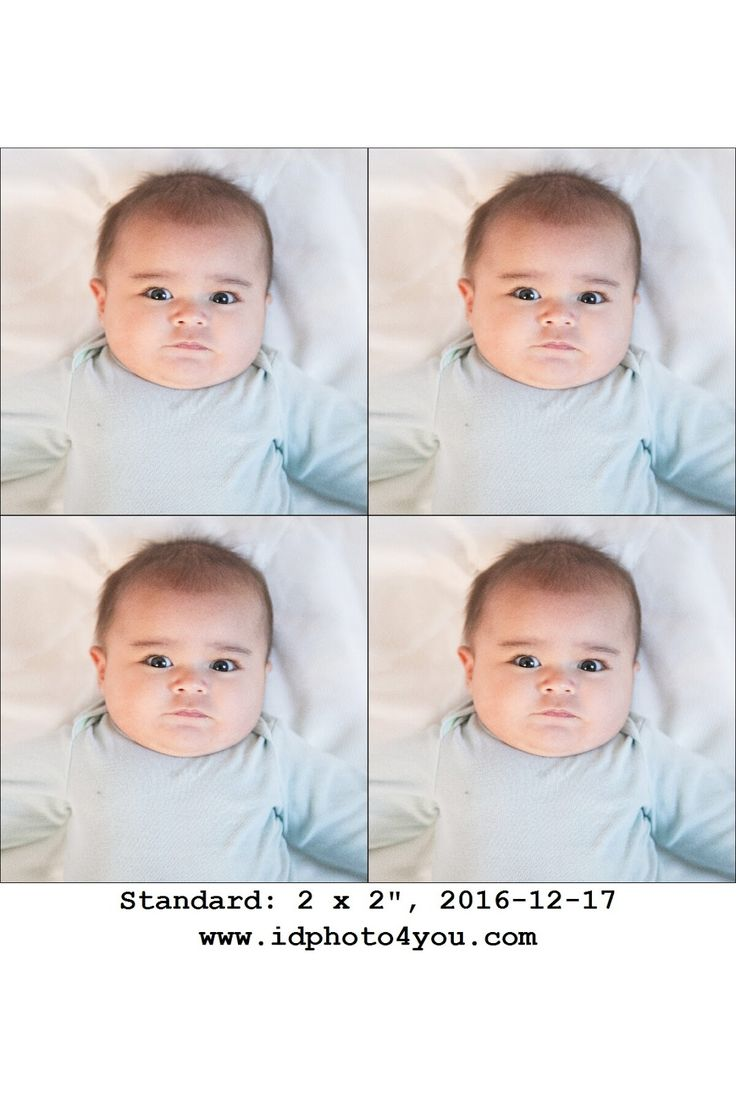 Best 25 apply for passport ideas on pinterest international how to apply for a passport for your newborn baby ccuart Image collections