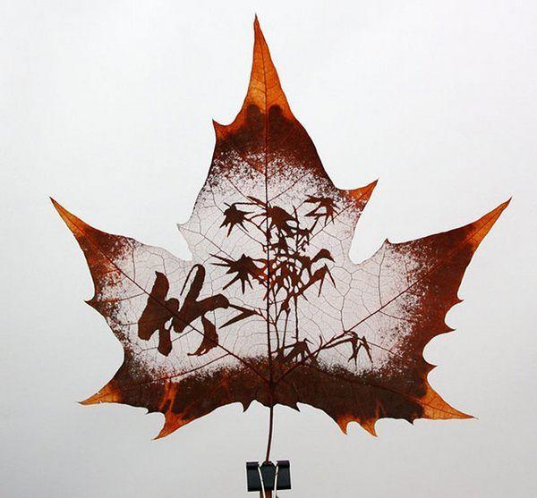 Смешные рисунки листьев и цветов