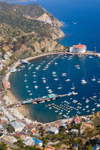 Where we got married! Catalina Island California
