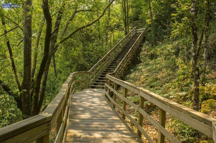 Información sobre el Cañón del Mao y la pasarela sobre el mismo valle. En Parada de Sil, Ourense y en la Ribeira Sacra