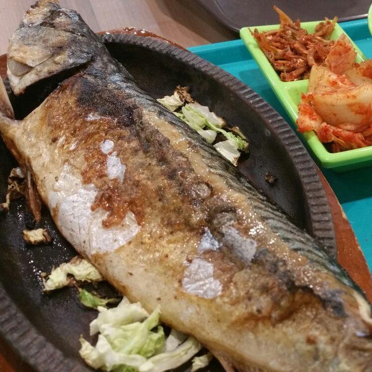 Saba fish frenzy
