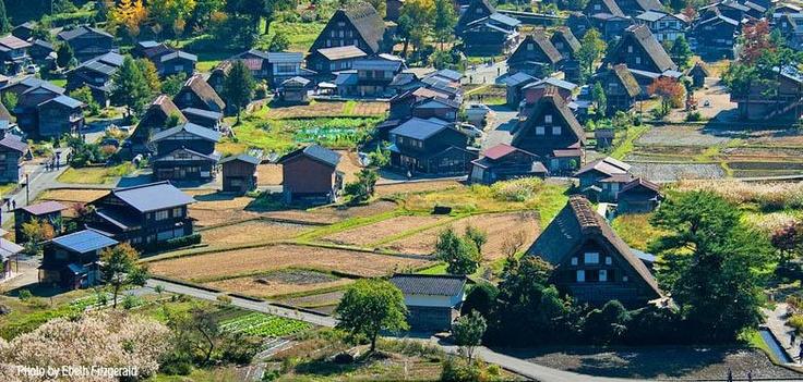 Shirakawa Village, #Japan