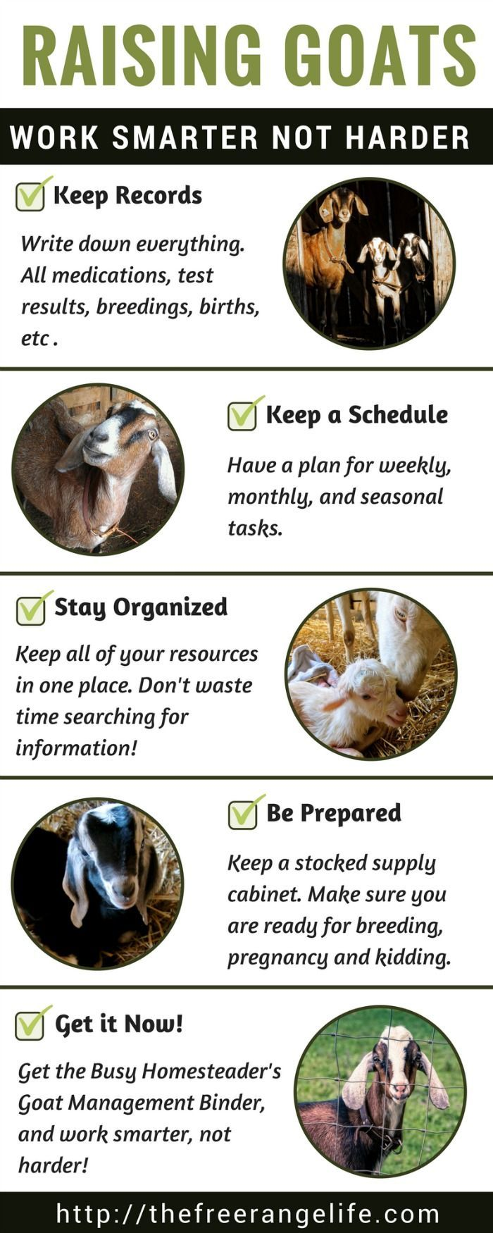 Raise goats smarter not harder! The Busy Homesteader's Goat Management Binder save you time and frustration keep your herd happy and healthy. Click for more information!