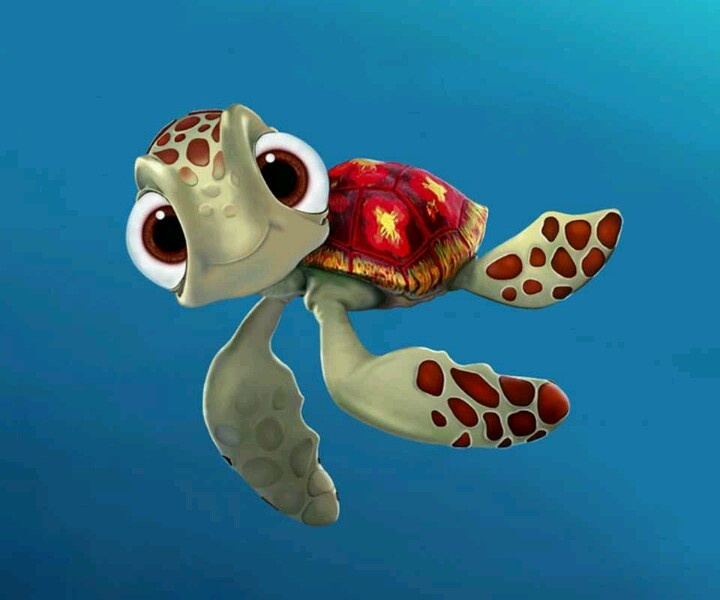 17 Best Images About Nemo Squirt On Pinterest Turtle