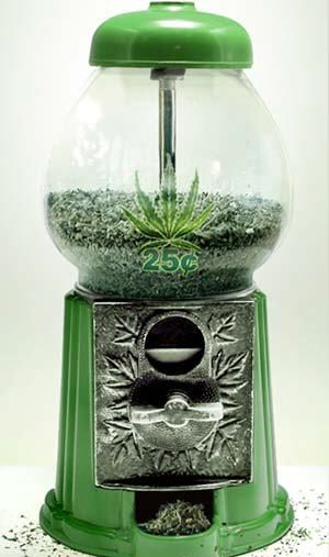 Weed Machine ~ no more quarters for my laundry! LOL