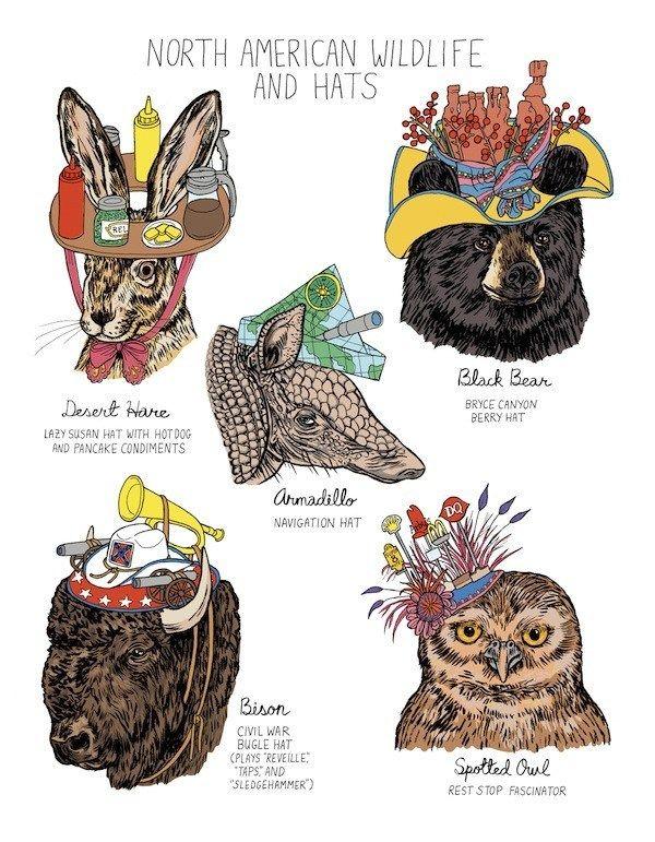 interview with Dirty Dumb Eyes cartoonist Lisa Hanawalt.