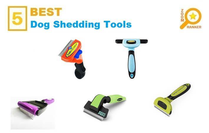 Best 25 Dog Shedding Ideas Only On Pinterest Itchy Dog