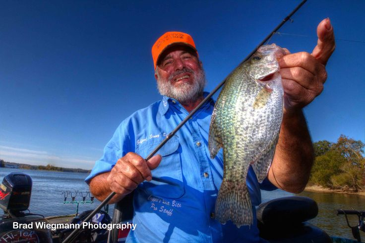231 best crappie fishing images on pinterest crappie for Crappie fishing in alabama