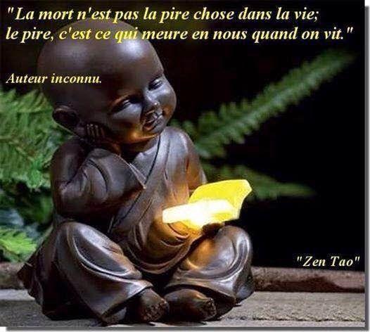 La mort physique   n'est pas la pire chose dans la vie.   Le pire, c'est qui meure en nous   pendant qu'on est en vie !     Zen Tao    ...