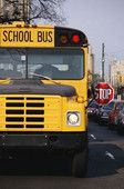 Expert tips for school bus safety