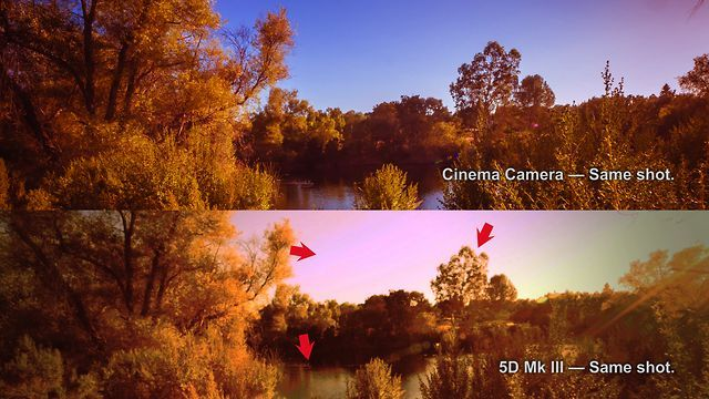 Comparing the Cinema Camera & 5D Mk III by OneRiver Media. Hosted by Marco Solorio of OneRiver Media, this video compares the Blackmagic Design Cinema Camera and the Canon 5D Mark III in several tests. This includes dynamic range, sharpness, pushing levels, banding, artifacts, rolling shutter, chromakeying, wide/telephoto lengths, DOF (depth of field), low light, macro blocking, contrast, and more.