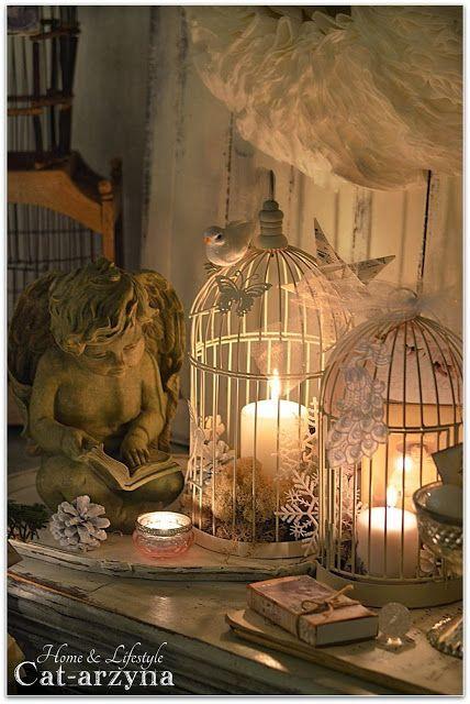 Beautiful decor - Barn Owl Eye Candy