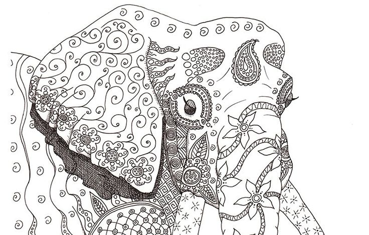 Elephant Mandala Coloring Pages For Adults Face Coloring Pages