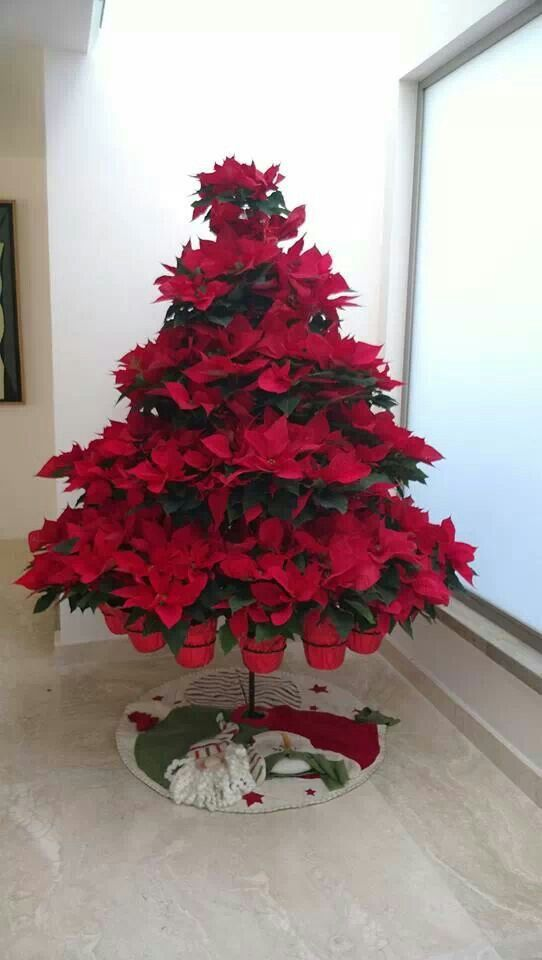 Tree of poinsettias