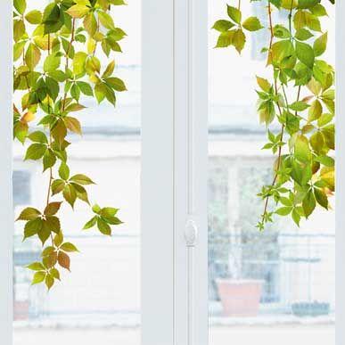 sticker pour fen tre xl vigne vierge nouvelles images vert pinterest stickers windows. Black Bedroom Furniture Sets. Home Design Ideas