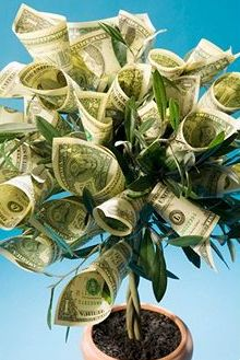 Gifts for Him, Her, or Teens:  DIY gift wrap money tree for cash gifts from Buzzle.com