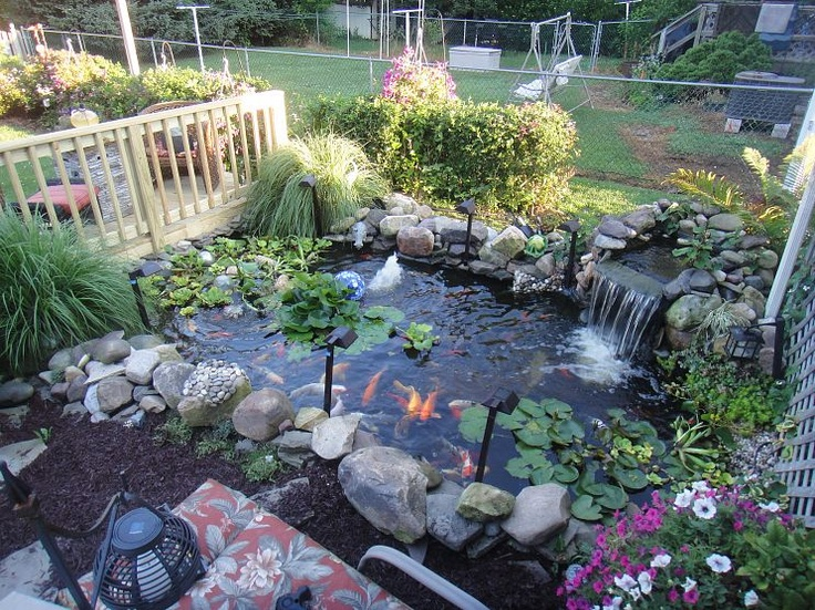 119 best ponds images on pinterest backyard ponds water for Koi pond hiding places