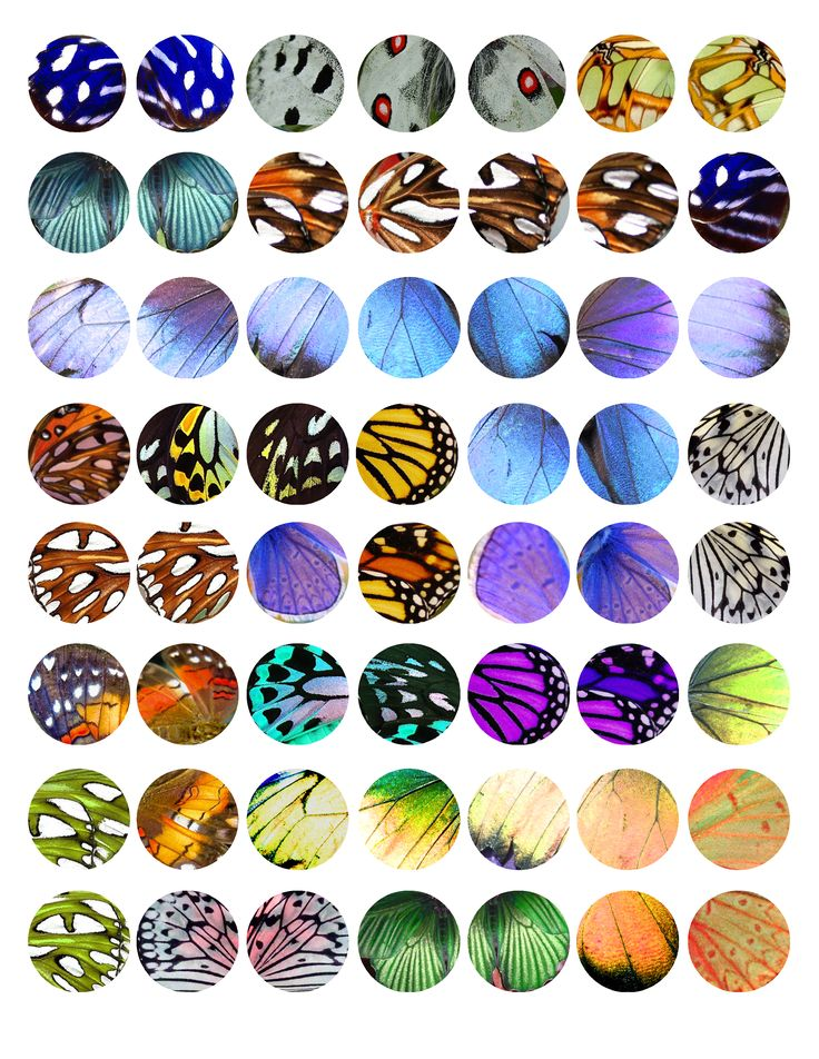 """Butterfly Wing Textures - Bottle cap images, high resolution formatted for printing on 8.5"""" x 11"""" page"""