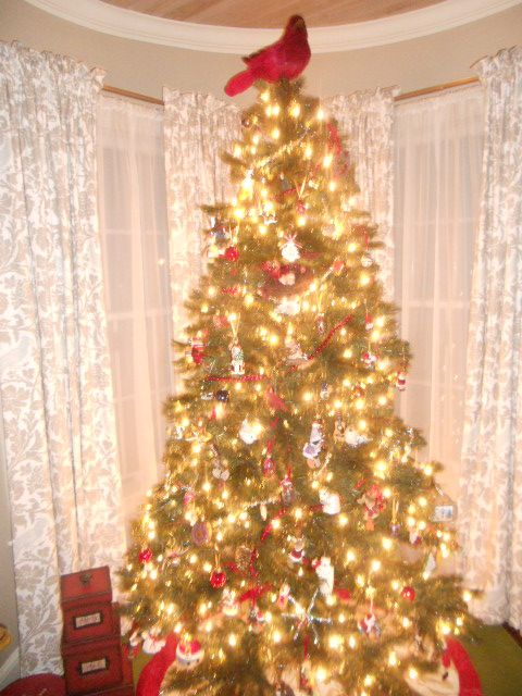 2014 our tree...