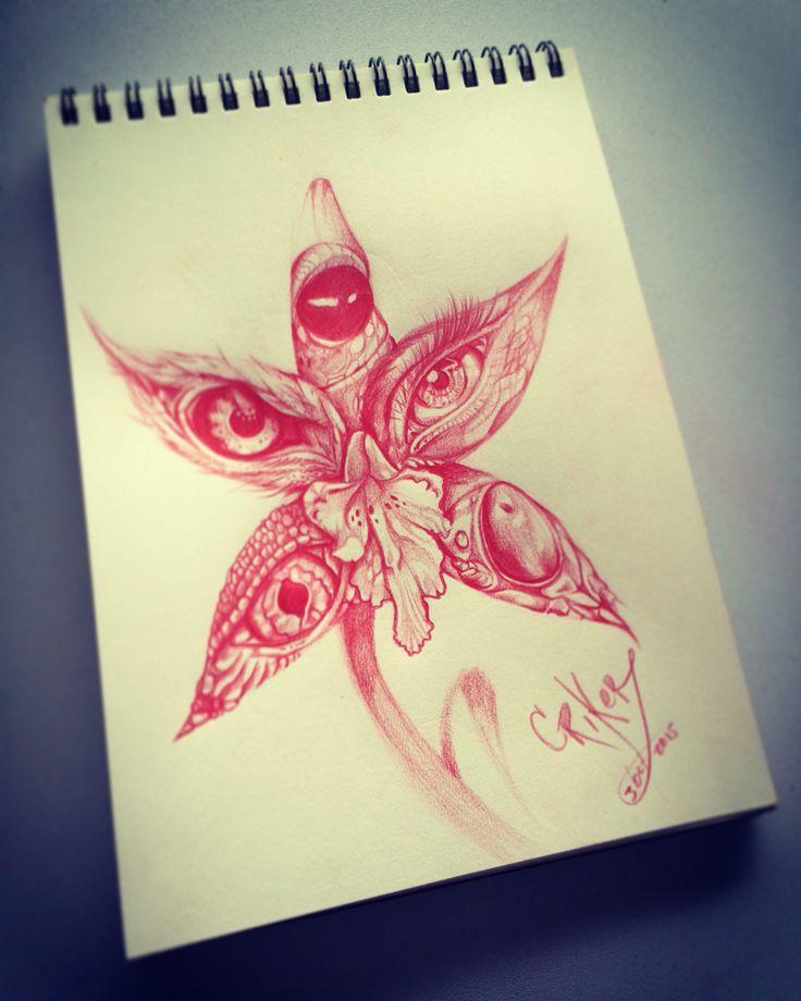 Orchid Eyes CRIKER