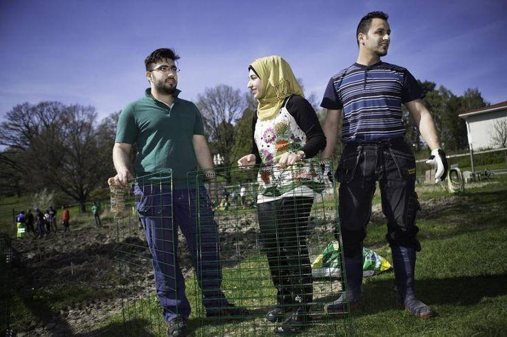 """Odlingsgruppen i Sköndal en väg in i Sverige: """"Plantorna är mina vänner"""""""