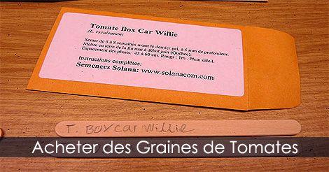 Graines de tomates. Guide détaillé : http://www.jardinage-quebec.com/guide/semis-de-tomates/