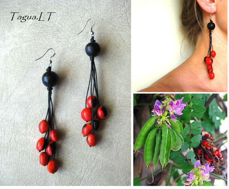 earrings from jaboncil and huayruro seeds