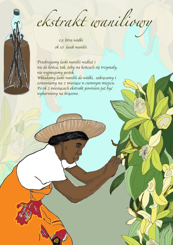 """Ilustrowany przepis / illustrated recipe"" illustration, 2011"