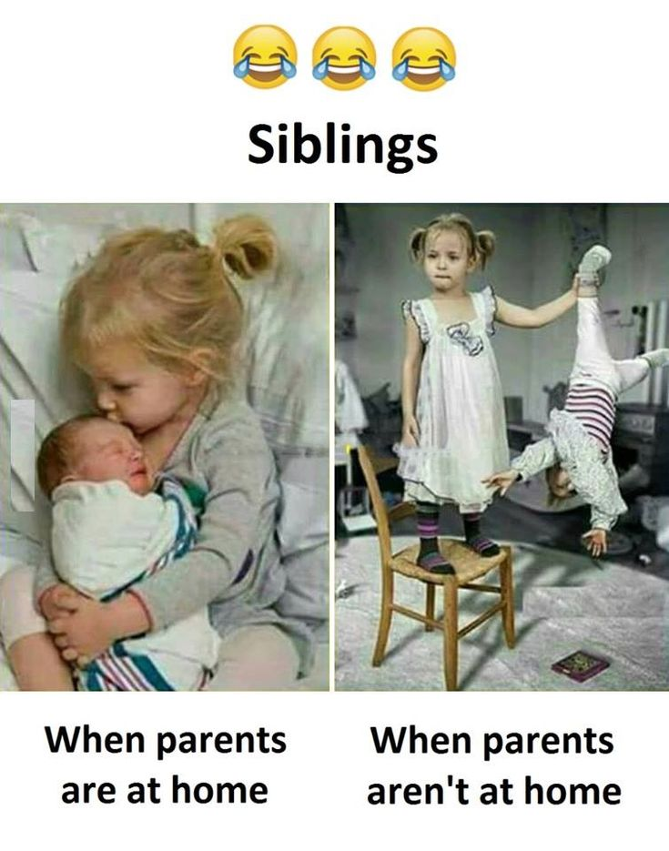 Siblings Funny baby quotes, Siblings funny, Funny baby memes