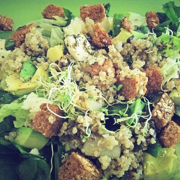 Quinoa con ensalada verde, brotes de alfalfa, requesón, crutones caseros de pan integral al ajo, hierbas y especias del mediterráneo.