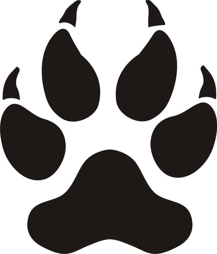 Small Panther Paw Print Images - ClipArt Best | Baby Z ...
