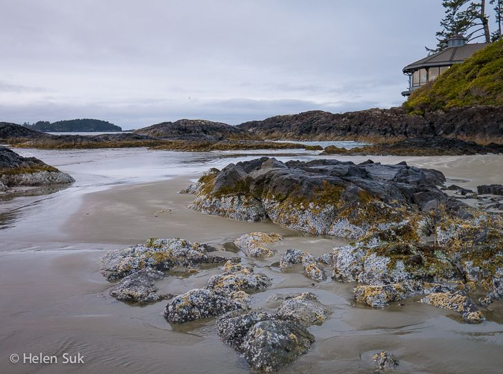 My unforgettable experience at the Wickaninnish Inn, a world-class eco-resort on the rugged shores of Tofino, BC.