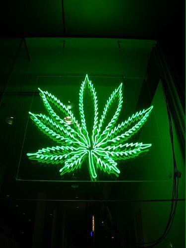 Technology x Weed (@TechnoloWeed) | Twitter