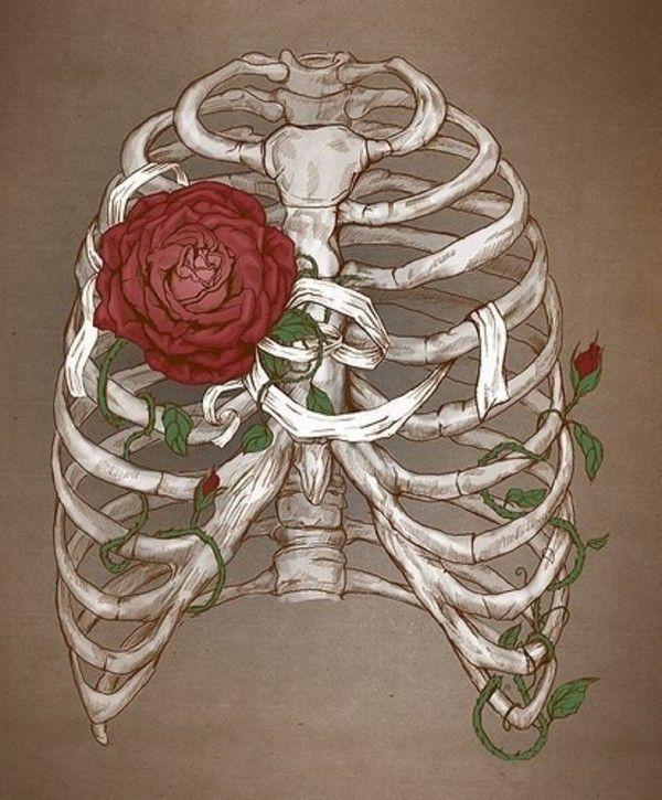 Картинки ребра и цветы